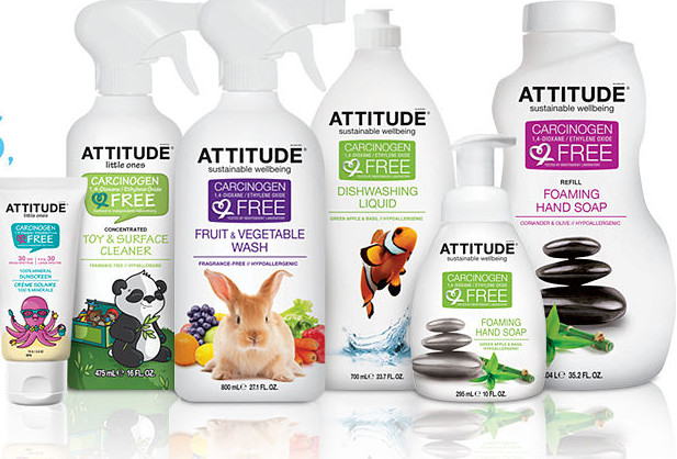 Clean Attitude Cleaning Products