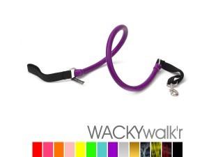 walkr-300x225