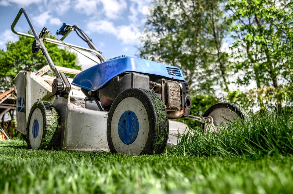 , Things to Consider When Purchasing a New Lawn Mower
