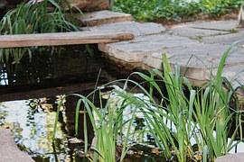 garden-pond-1045473__180