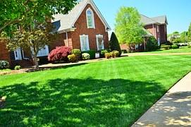 lawn-care-643561__180