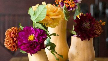 gourds-and-flowers