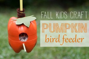 Pumpkin-Bird-Feeder-1-300×200