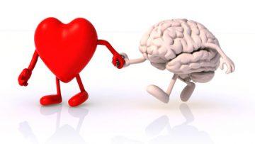 coeur_cerveau