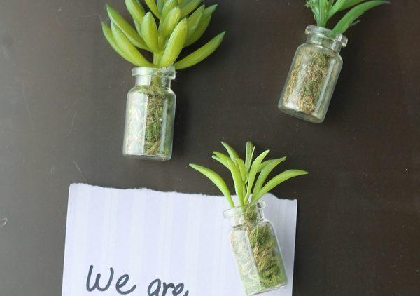 succulent-mason-jar-magnets-001