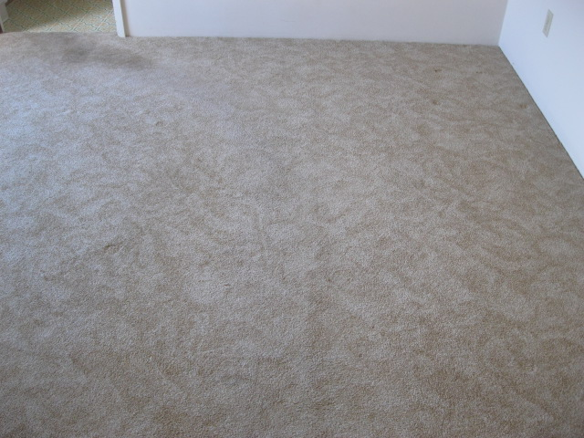 , Expert Advice: Carpet Repair – Clean First or Stretch First?