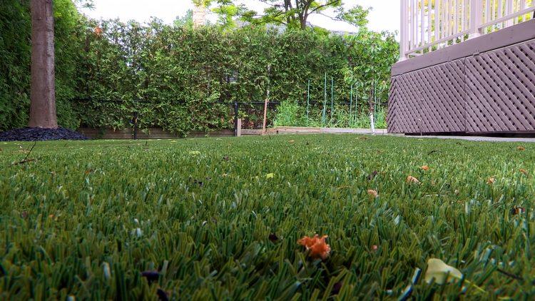 M&M_S13E09_Bran Lakoseljac_Lazy Lawn