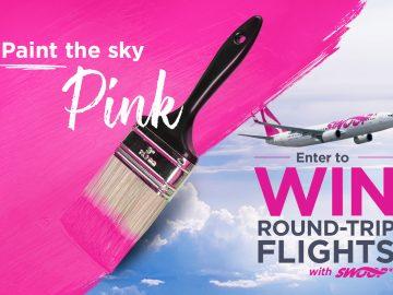 Swoop-Paint-Skies-Pink-Img
