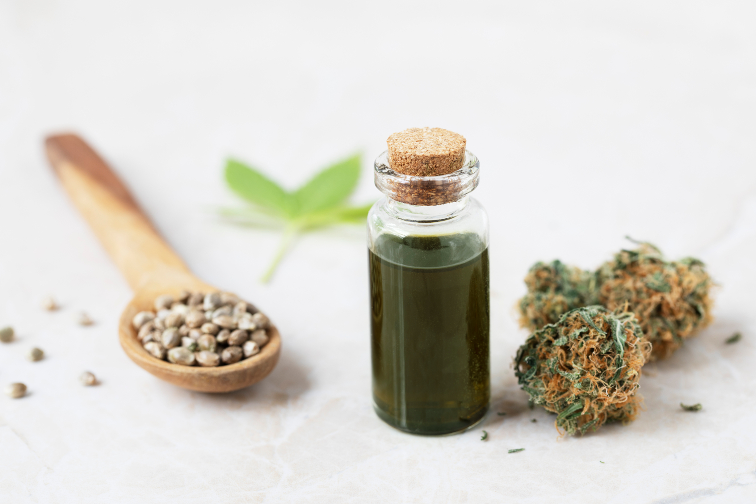 , Comparing CBD with Traditional Medications