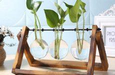 , Enter To Win: Glass & Wood Tabletop Terrarium