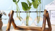 Glass-and-Wood-Vase-Planter-Terrarium-Table-Desktop-Hydroponics-Plant-Bonsai-Flower-Pot-Hanging-Pots-with